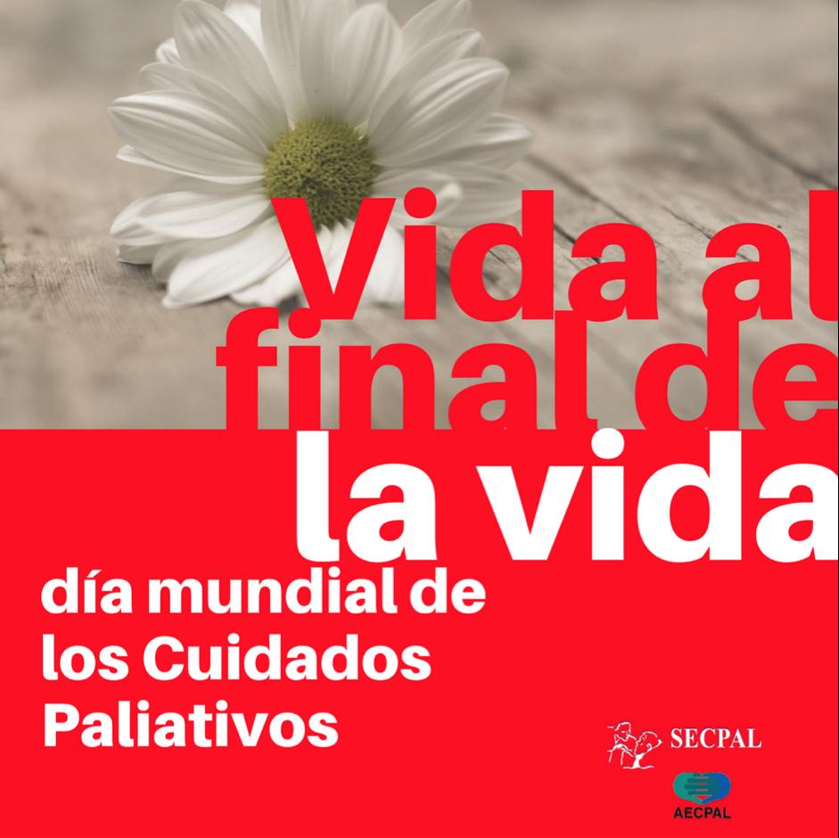 avatar_cuidados_paliativos
